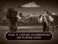 WagsandCaptainFeatherswordinHygiene