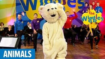 The Wiggles Here Comes a Bear