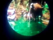 JungleCruiseElephant