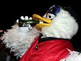 Plucka Duck