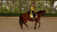 RidingBoots6