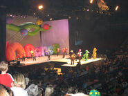 Lights,Camera,Action,Wiggles!-2006Live