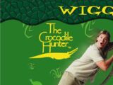 The Wiggle Owl Medley
