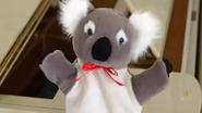 KoalaLullaby25