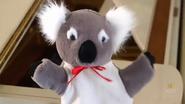 KoalaLullaby19