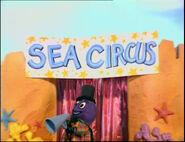 TheSeaCircus