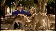 DannyVisitsAustralia4