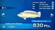 Mutlicolorfin Rainbow Turn In