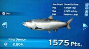King Salmon Turn In
