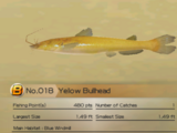 Yellow Bullhead