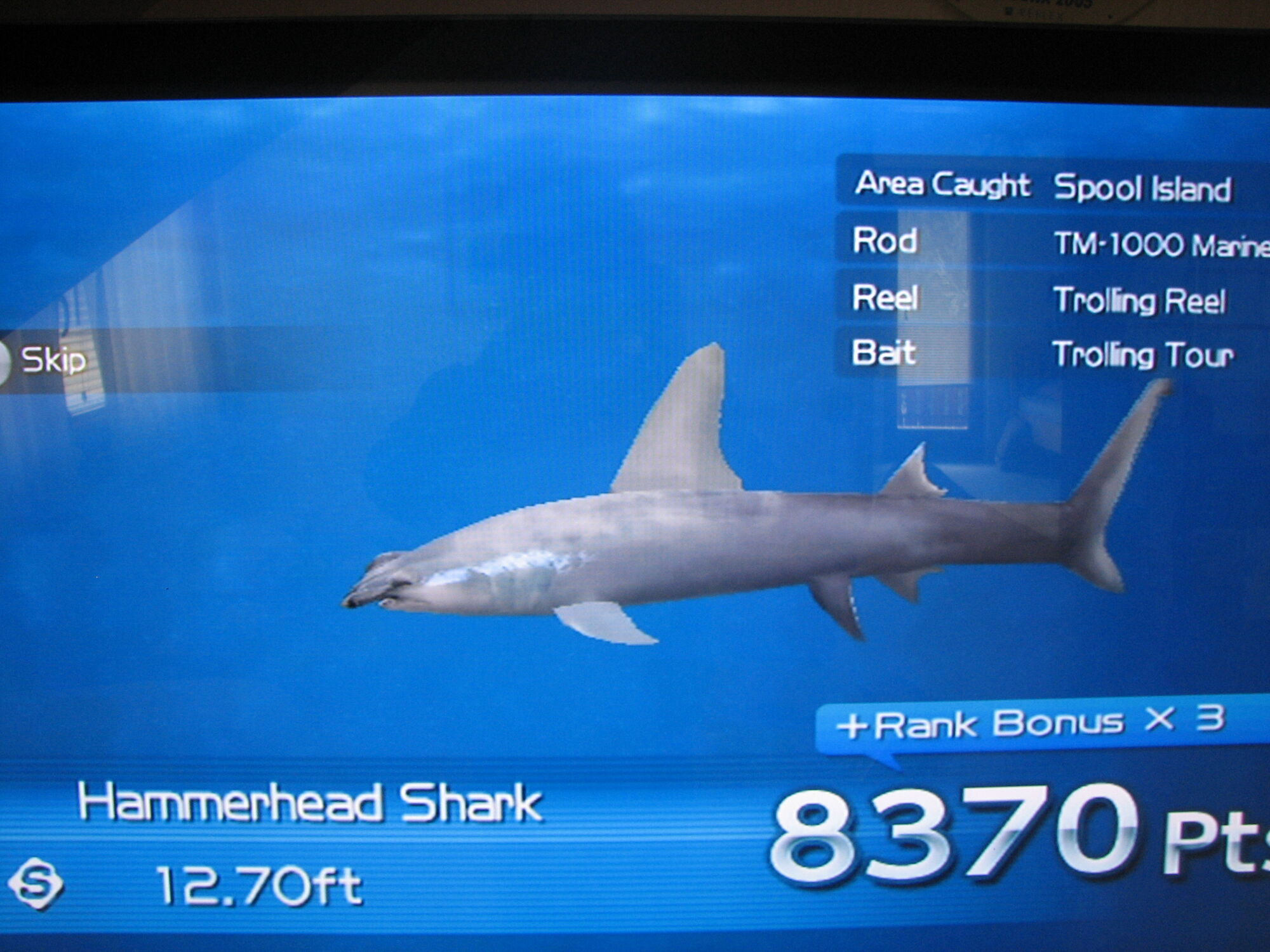 Hammerhead shark wii fishing resort wiki fandom for Shark fishing games