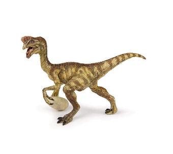 Oviraptor Wiki Prehistorica Fandom Para poder conocer un poco más el oviraptor, será interesante concretar los puntos más importantes de este reptil, para poder conocer un poco mejor su. oviraptor wiki prehistorica fandom