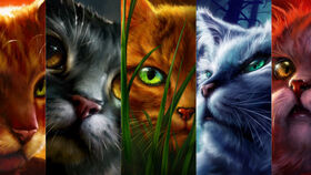 Warriors cats slider