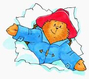 Paddington Bear (3)