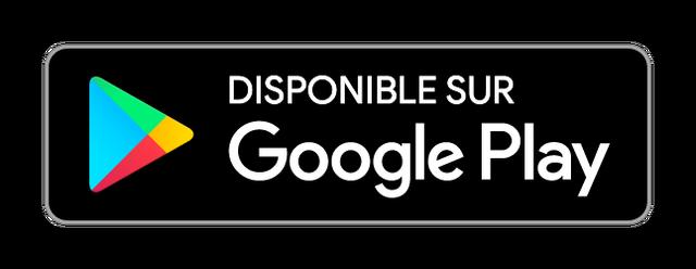 File:Google-play-badge-fr.png