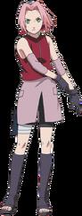 SakuraHarunoShippuden