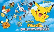 Pokémon court métrage 17