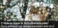 Коты-Воители Вики баннер НГ15