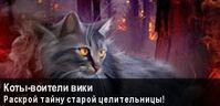 Коты-Воители Вики (баннер)