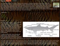 Tiger Wiki (3)