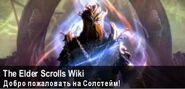 Баннер The Elders Scrolls Wiki