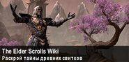Баннер The Elder Scrolls Wiki (март-апрель 2016)