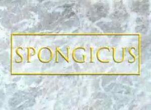 Spongicus