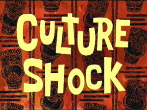 300px-Culture Shock