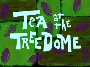 Tea at the Treedome