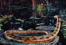 Junglebook42