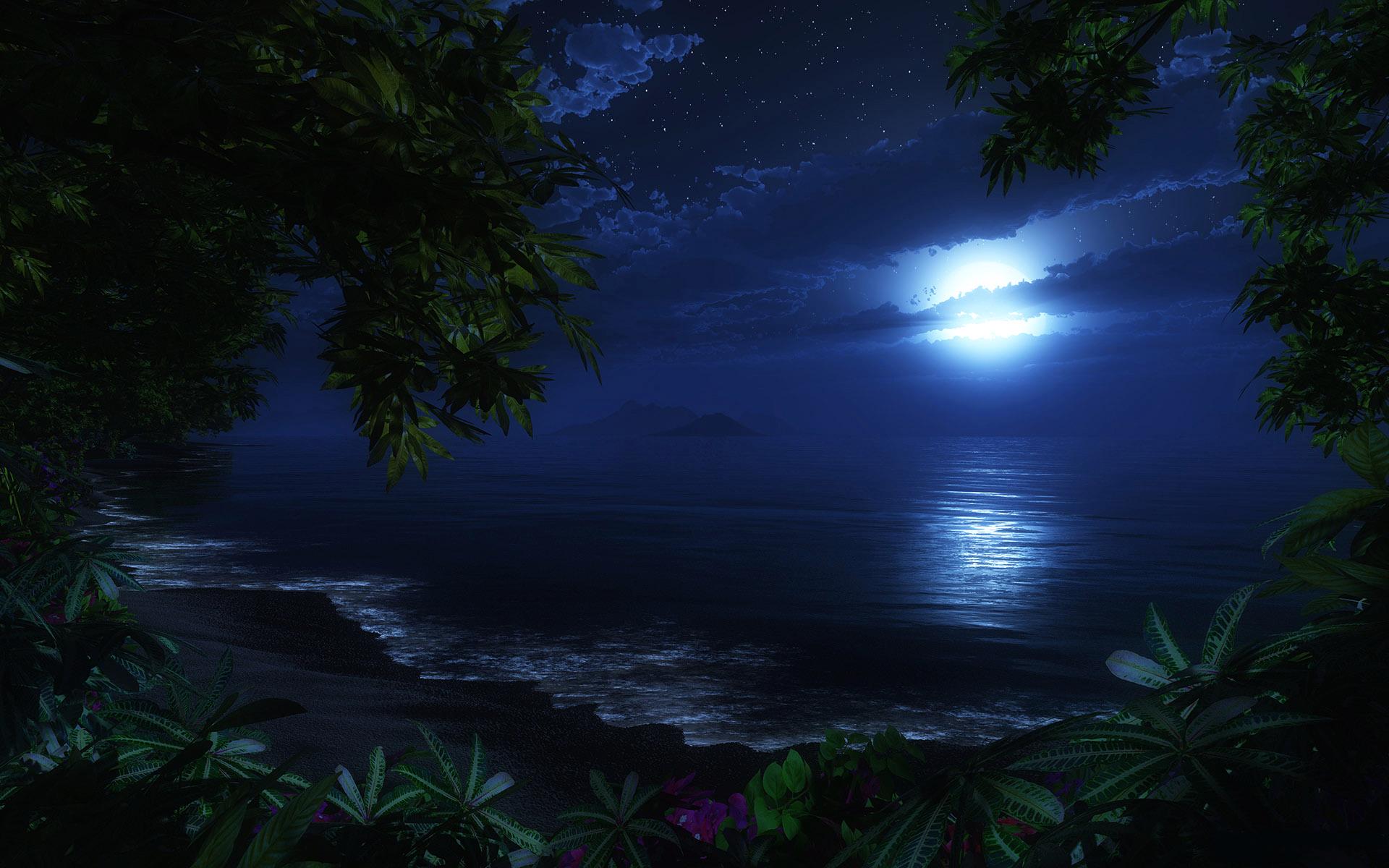 Sea Beach At Night