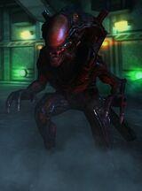 Berserker (Xenomorph)