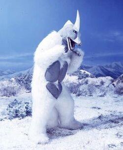Snowgon