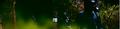 Miniatura de la versión de 14:01 9 oct 2017