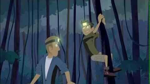 Wild Kratts - Googly-Eye The Night Guru(New Episode)