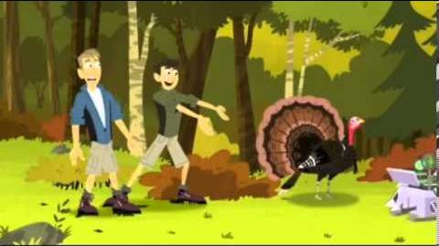 Wild Kratts - Happy Turkey Day