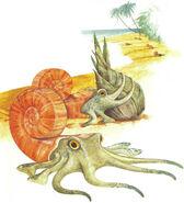 CoconutGrab