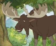 File:Moose.jpg