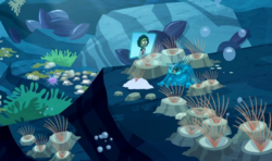 Wild Kratts Tide Pools
