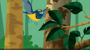 Aviva and Bros Flying away from Bird