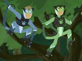 Spider Monkey Power