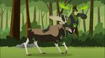Moose Chris on Moose