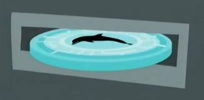 Dolphin.disk