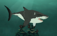 Great White Shark-Wild Kratts