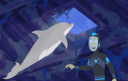 Dolphin.wildkratts.0025