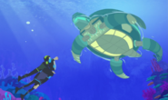 Tortuga Tune-up.Wild Kratts.05
