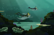 Sharks-Wild Kratts-09
