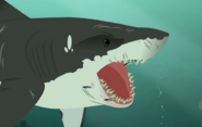 Sharks-Wild Kratts-32