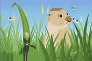 Grass Chris and Prairie Dog