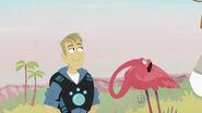 Martin with a flamingo